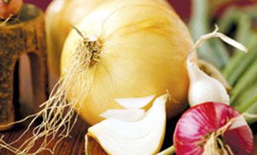 _0005_onion-program